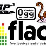 Formati Audio: quali scegliere fra Lossless e Lossy?